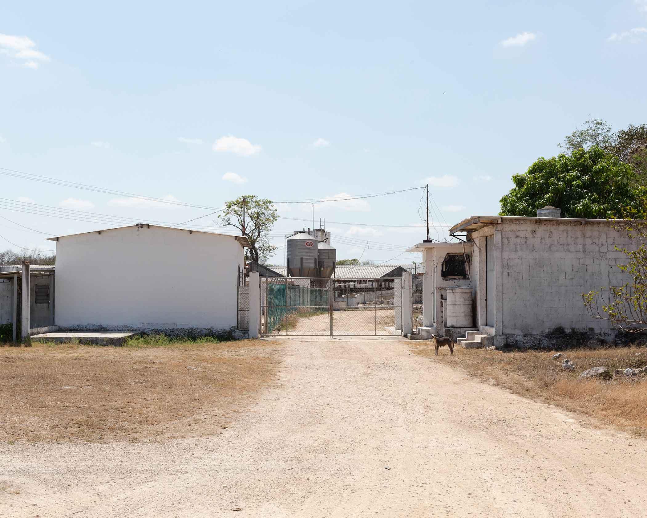 Granja - Yucatán